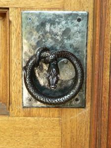 Davis door snake